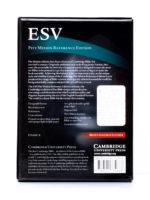 Cambridge ESV Pitt Minion Brown - Back Cover