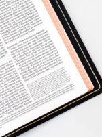 ESV Omega Bible Art Gilding