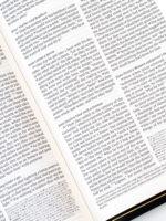 ESV Omega Bible Page Layout
