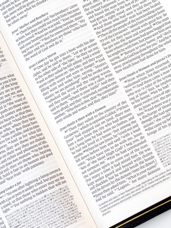 ESV Omega Bible Page Layout