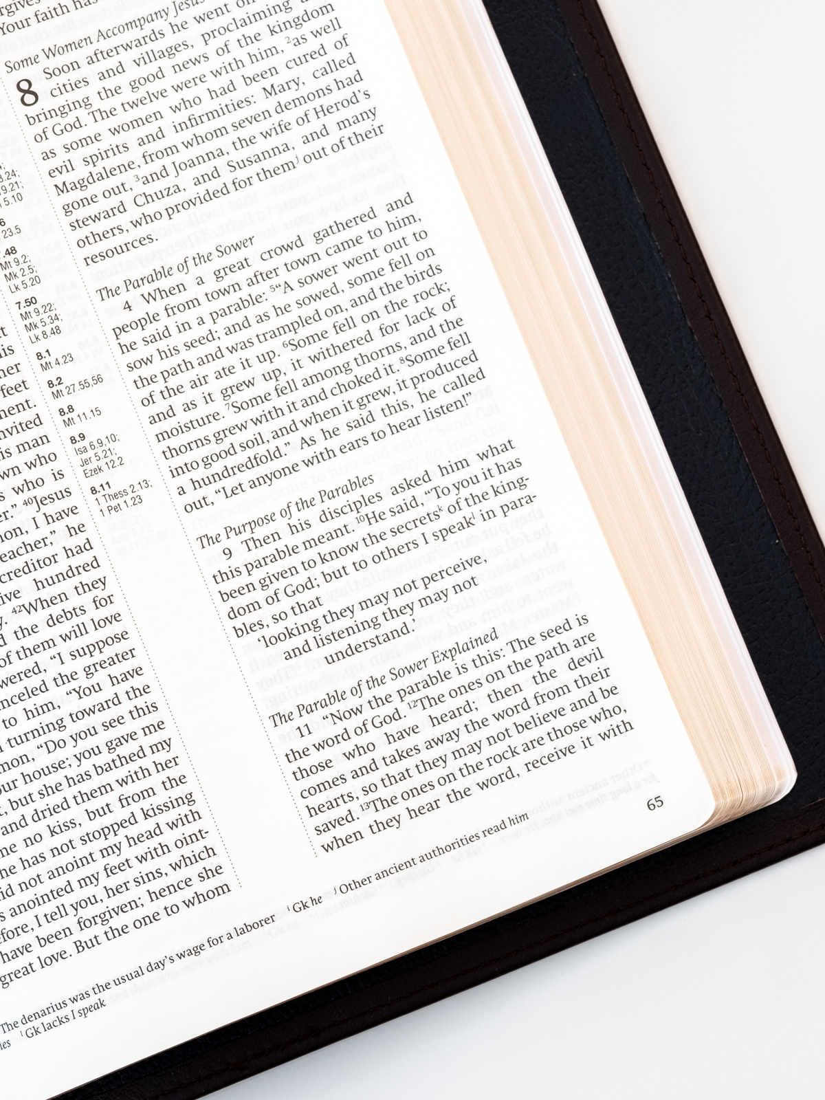 Cambridge NRSV Reference Bible Page