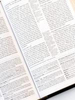 ESV MacArthur Study Bible Personal Size Page