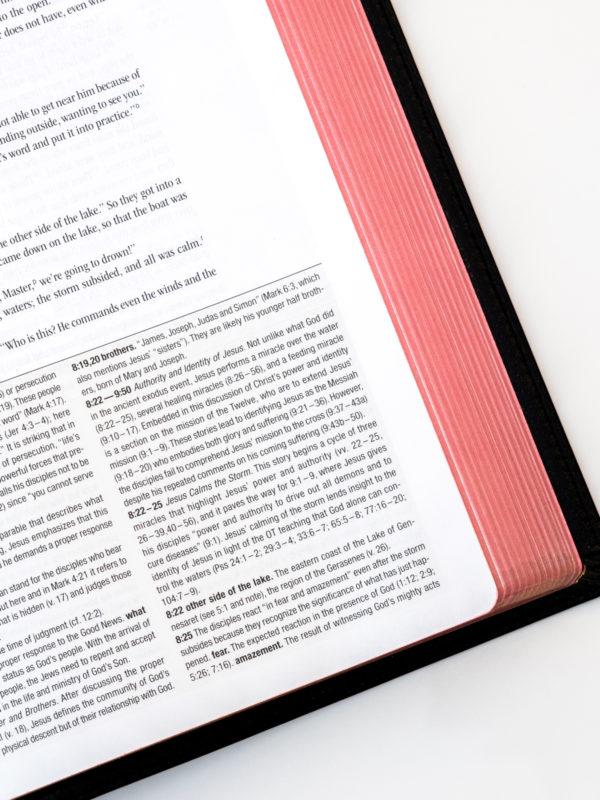 NIV Zondervan Study Bible Art Gilding