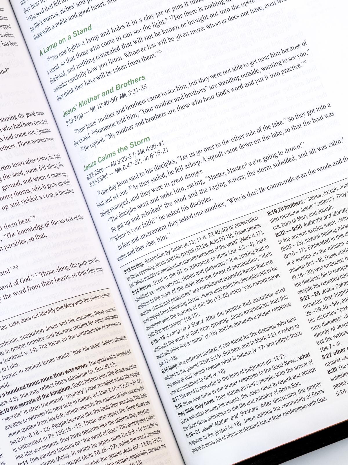 NIV Zondervan Study Bible Page