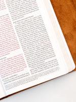 ESV Thinline Bible Tan Cowhide Page